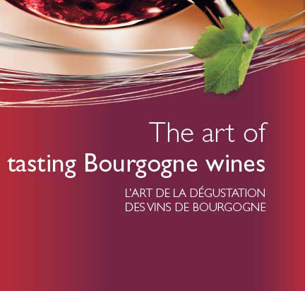 The art of wine tasting in Bourgogne
