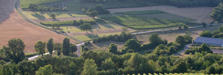 Bourgogne Hautes Côtes de Beaune - Bourgogne wines