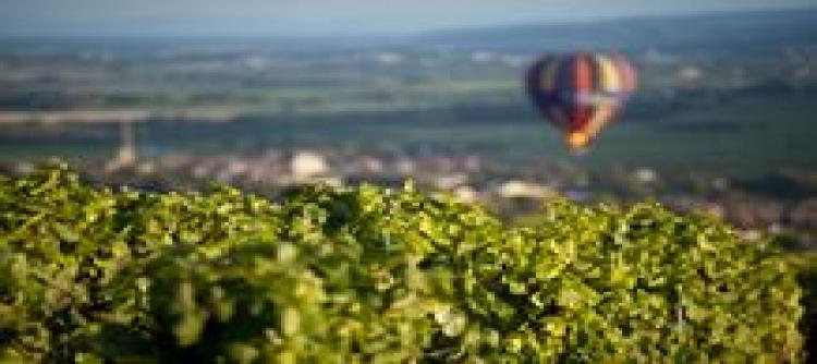 """Bourgogne Wines on Tour"" in the UK, in partnership with The Drinks Business"