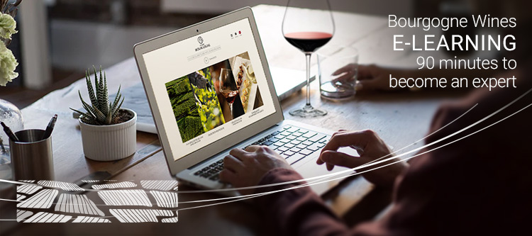"Take a look at our new eLearning training module, ""Discovering Bourgogne Wines"""