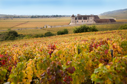 © BIVB / ARM Landscape in the region of the Côte de Nuits: Clos Vougeot