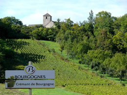 © SUCHAUT C Landscape in the wine growing region of the Chatillonnais.