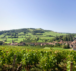 © BIVB / ARM.COM  Landscape in the wine growing region of the Côte de Chalonnais