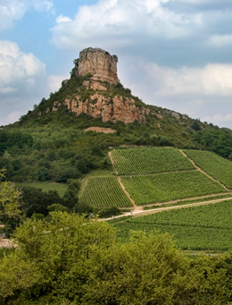 © BIVB / ARM.COM Landscape in the wine growing region of the Mâconnais.