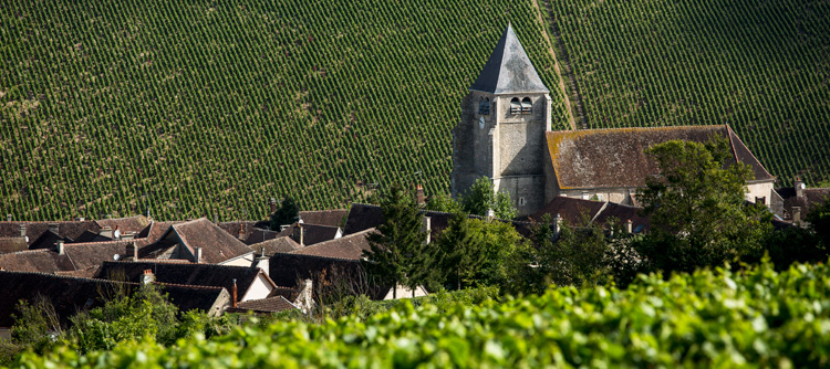 © BIVB / IBANEZ A Visits to typical Burgundy villages