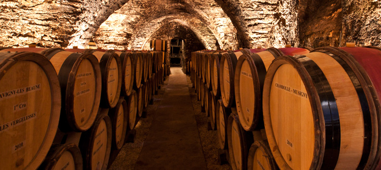 © BIVB / IBANEZ A. Barrel cellar in Burgundy
