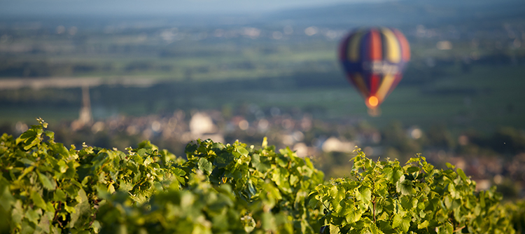 Your key stops in the Bourgogne wine region