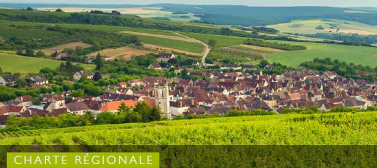 Sustanaible development, one of the priority for the Bourgogne Wines industry