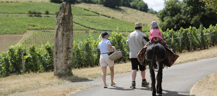 Wine tourism in Bourgogne © BIVB / Lukam