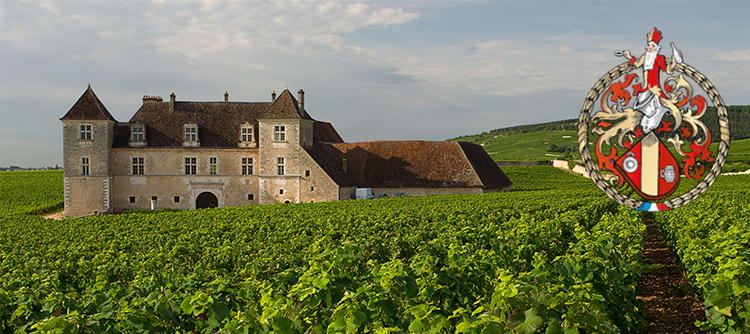 views of the clos de vouegeot in Bourgogne