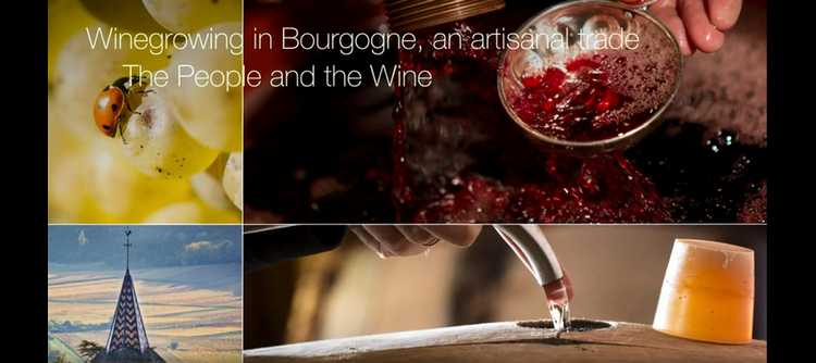 Winegrowing in Bourgogne: An artisanal craft