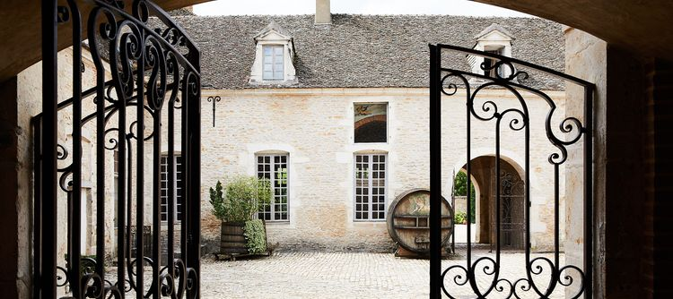 A Domaine with many projects to protects the patrimony of Pommard