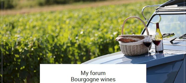 Join the Speakers' Corner to share your Bourgogne wines experiences!