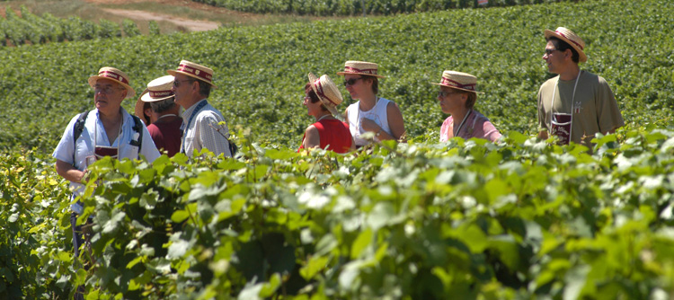 © BIVB / MONNIER H Discovery tours in the vineyards
