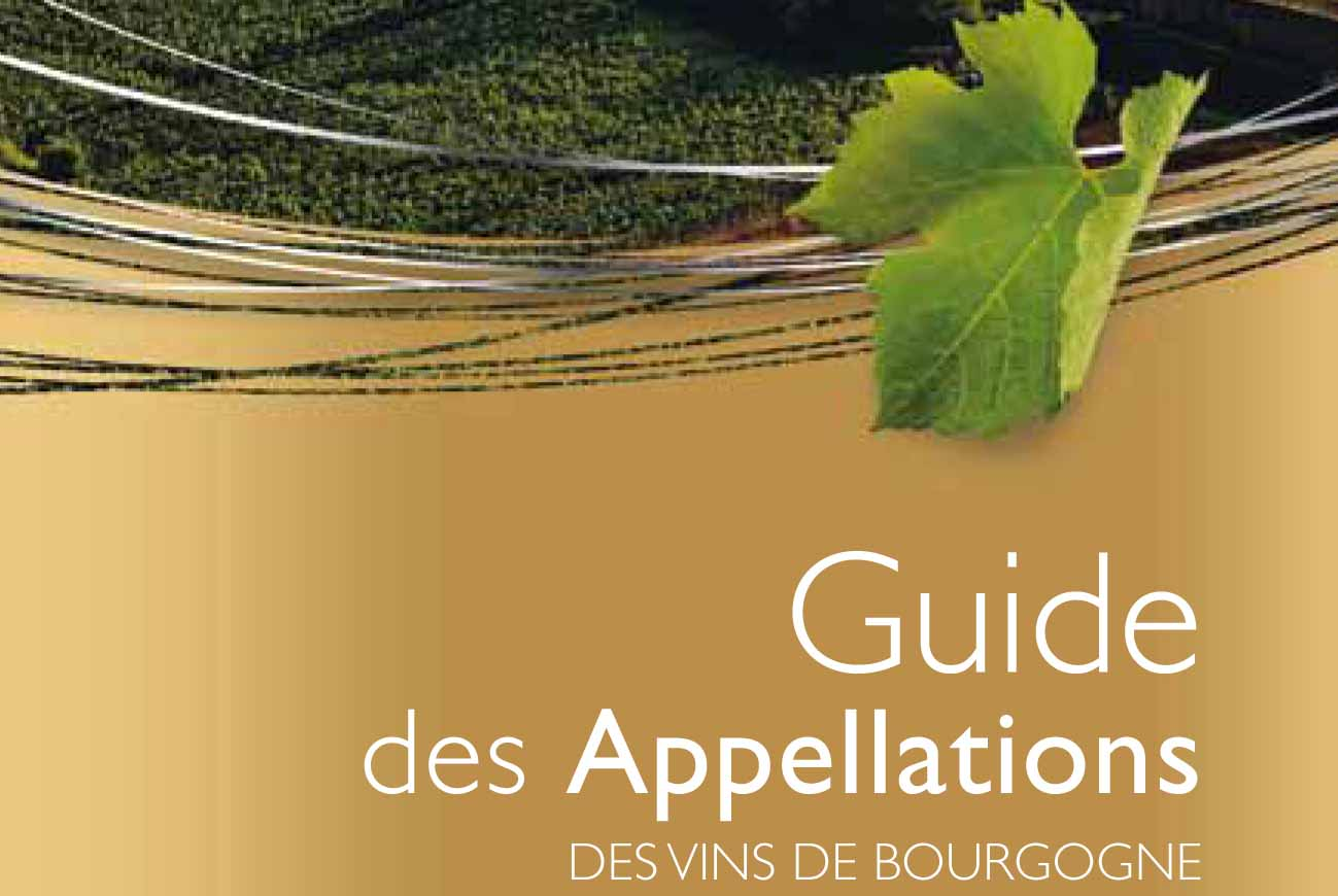 A guide to Bourgogne's appellations