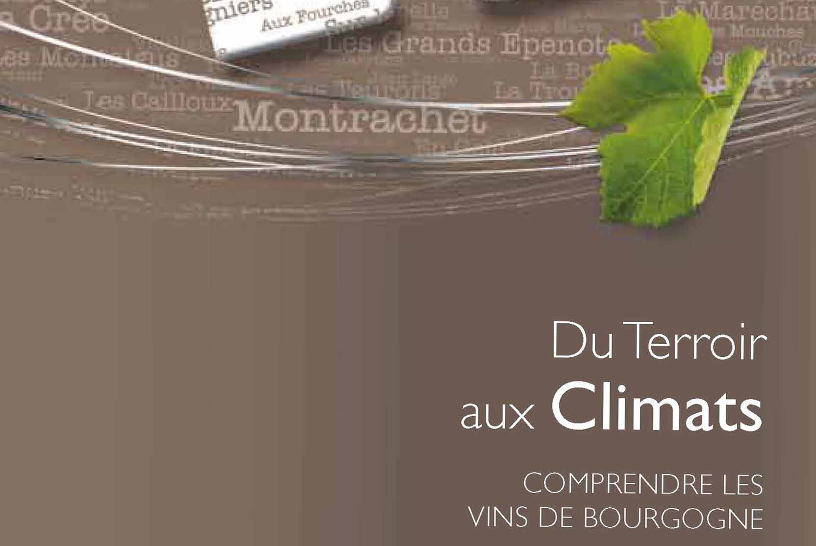 "From Terroir to ""Climats"" - Understanding Bourgogne wines"