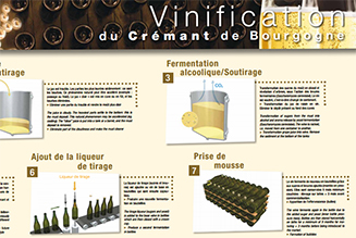 Poster: Making Crémant de Bourgogne wines