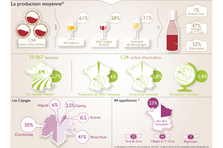 Key figures for the Bourgogne winegrowing region