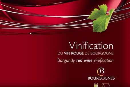 Vinification of red Bourgogne wines