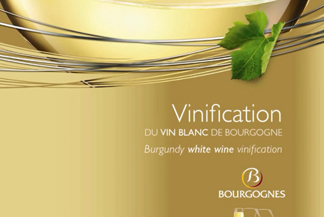 Vinification of White Bourgogne wines