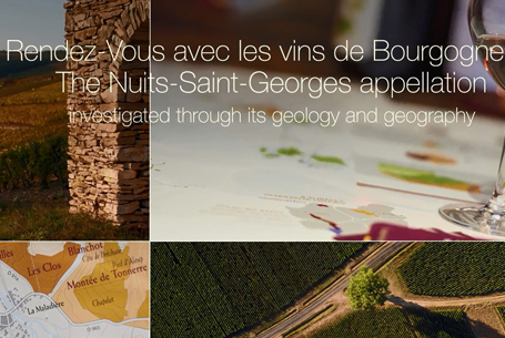 The Nuits-Saint-Georges appellation
