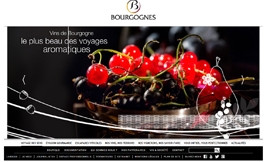An enticing site to discover the wines of Bourgogne