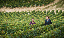 ©  Johann Michalczak - Lynn Marchie's children to take Domaine des Malandes in charge in Chablis
