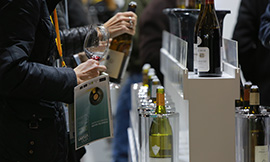 Vinovision, a trade show in Paris with Bourgogne wines tastings - © Vinovision