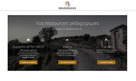 © BIVB - New Burgundy Wine Website dedicated to all trainers
