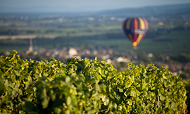 "© BIVB / Aurélien Ibanez - ""Bourgogne Wines on Tour"" in the UK, in partnership with The Drinks Business"