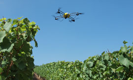 Drones: the new tool for sustainable winegrowing! ©NOVADEM - P. Zunino