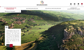Learn about Bourgogne wines anytime and anywhere ©BIVB/DR