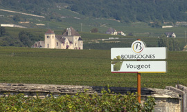 Vougeot, an appellation overshadowed by its famous Clos, but one that will delight the palate ©BIVB/H.MONNIER