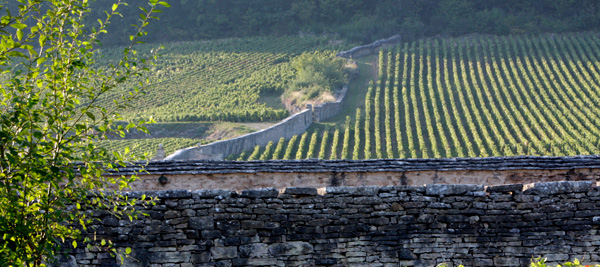 The Climats are as much a part of the landscape as the history of the Bourgogne winegrowing region ©BIVB/J.L. BERNUY