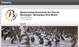 Bourgogne wines are now on LinkedIn ©BIVB/DR