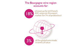 The Bourgogne wine region, small in size but with an unrivaled worldwide reputation © BIVB/DR