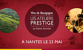 Sommeliers, restaurateurs, and wine store owners are invited to the Bourgogne wines Ateliers Prestige ©BIVB/DR