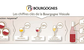 Find out all you need to know about the Key Figures for Bourgogne Wines ©BIVB/DR