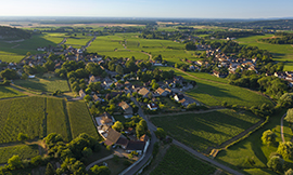 Mercurey, the Bourgogne winegrowing region's biggest appellation, and one to be discovered ©BIVB/Aurélien Ibanez