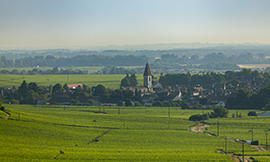 Nuits-Saint-Georges a Bourgogne Wines known by all the galaxy ©BIVB/Aurélien Ibanez