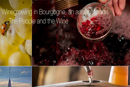 Wine growing in Bourgogne, an artisanal trade: The People and the wine